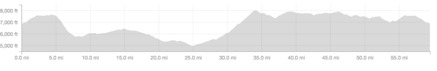 Big Bear Grizzly 100 NUE course profile